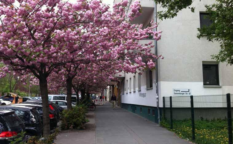 Sonnenburger Straße