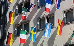 Don't have a flag? A passport will do (file). Photo: jpvargas/flickr
